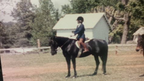 Shakers Black Ebony aka best horse ever